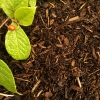 landscaping-soil-compost-and-bark