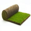 landscaping-grass-and-accessories