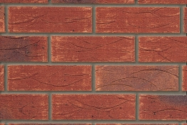 Tp Old English Brindled Red