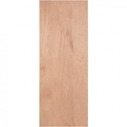 Flush Pwd Paint Graded Hollow Core Internal Door Height 2040mm