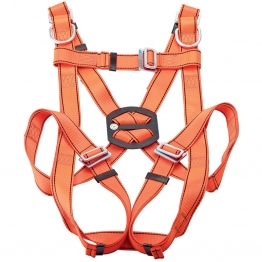 Expert Safety Harness